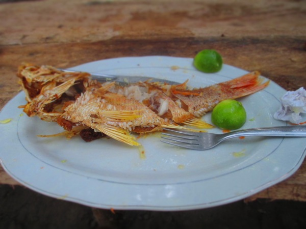 whole snapper colombia