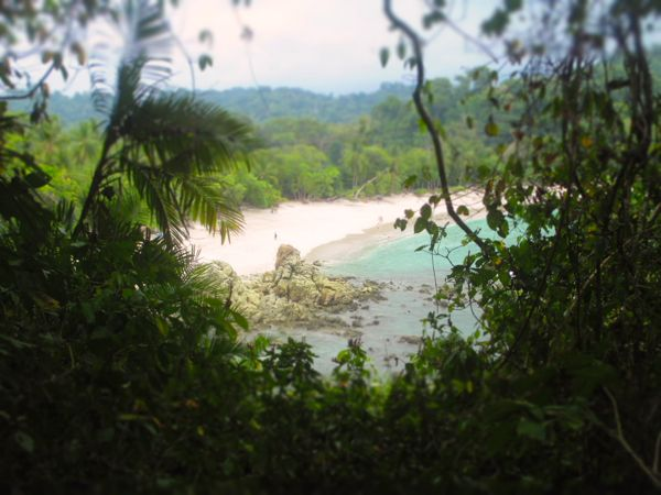 Manuel Antonio Beach View