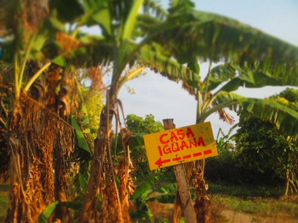 Little Corn Island Casa Iguana