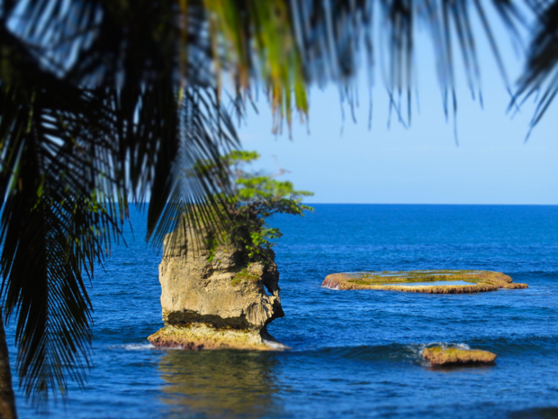 Ultimate Guide to Puerto Viejo - 007