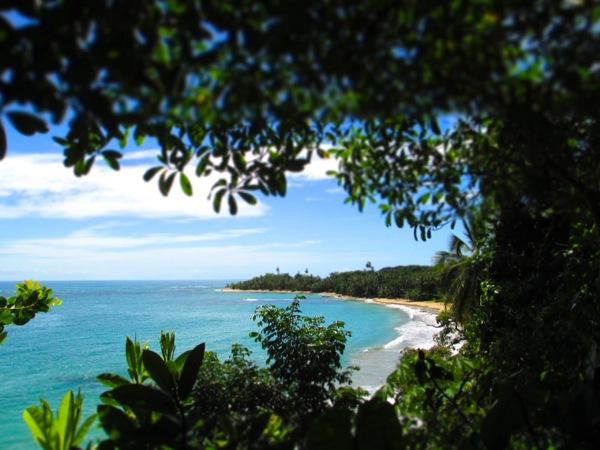 punta uva arrecife view