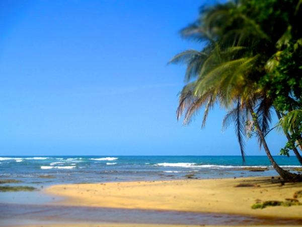 Goodbye Puerto Viejo - 09