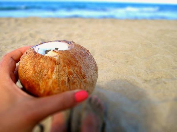 costa rica coconut