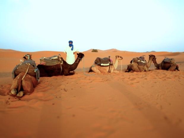 Sahara - 03