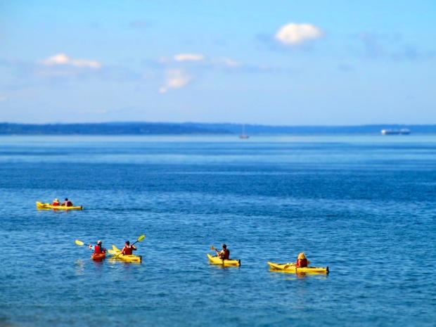 kayaking alki