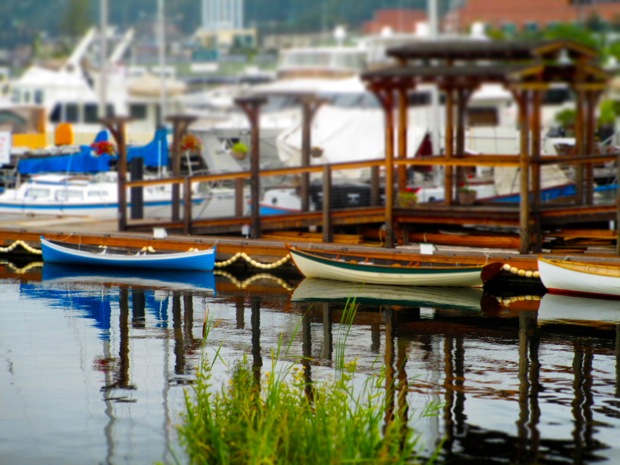 lake union mohai