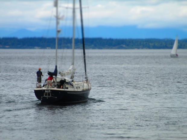 golden gardens sailboat