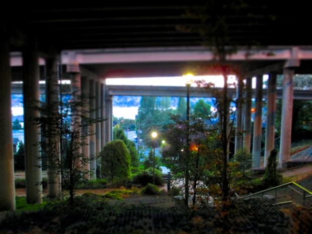 Seattle freeway park