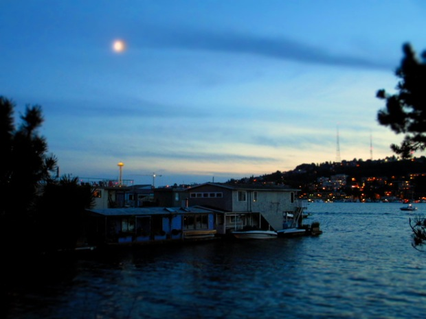 night on lake union