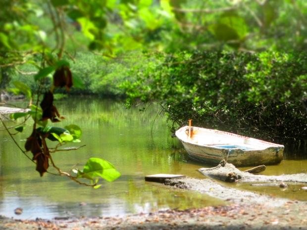 manuel antonio river