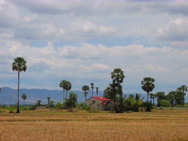 Cambodia Broke My Heart - 13
