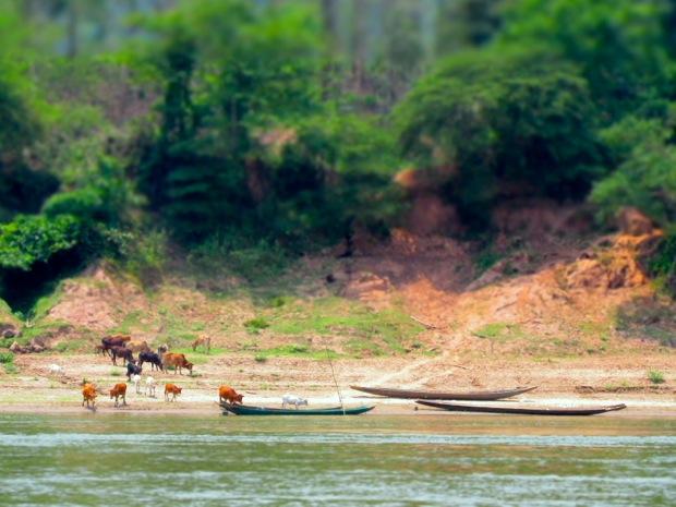 Laos - 09
