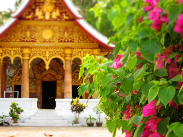 Laos - 16