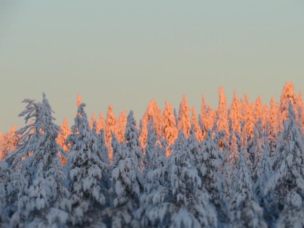 Salla Lapland