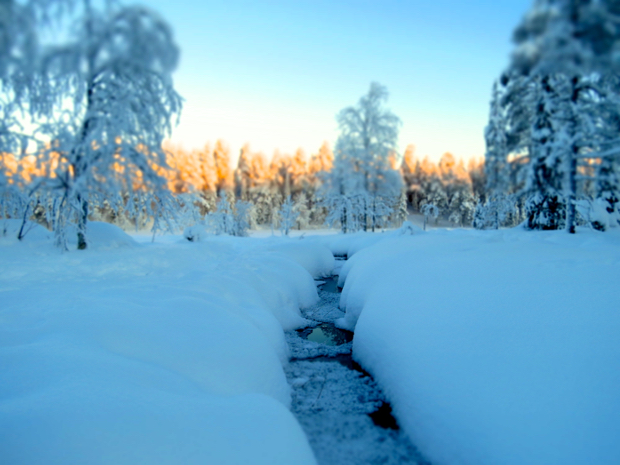 How to Survive Winter in Lapland - 013