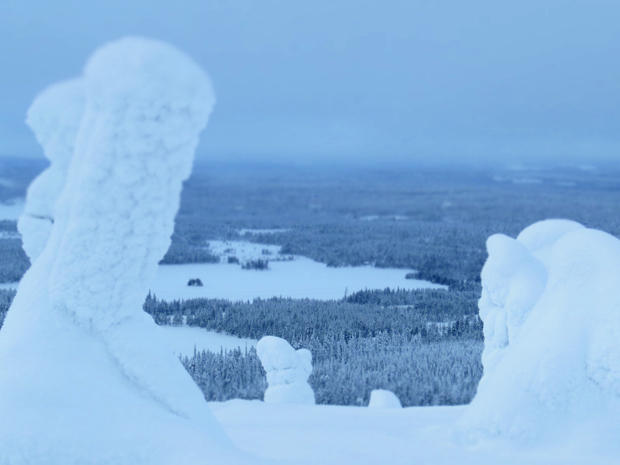 How to Survive Winter in Lapland - 020
