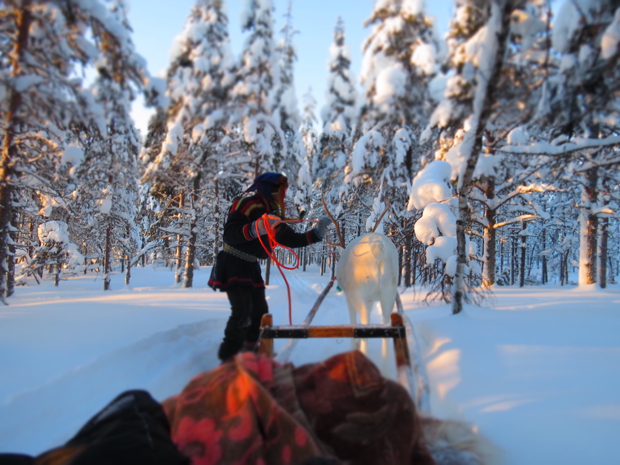 How to Survive Winter in Lapland - 025