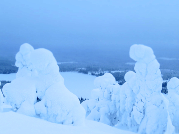 How to Survive Winter in Lapland - 055