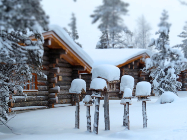 How to Survive Winter in Lapland - 061