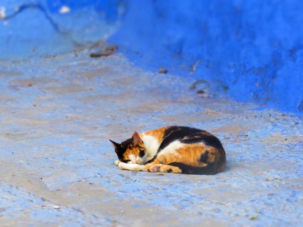 Woman Alone Morocco - 08