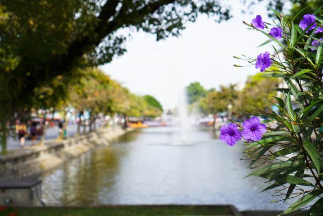 Chiang-Mai-12