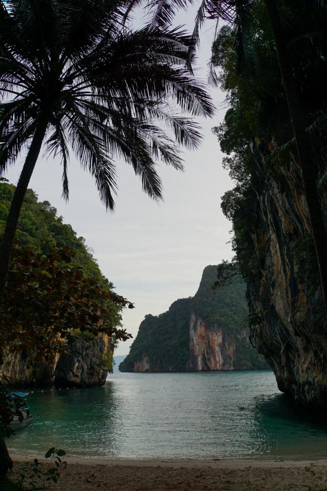 Thailand tall-3