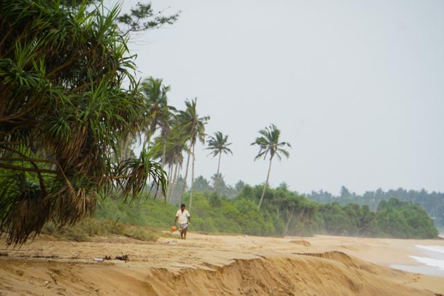 Sri Lanka-57
