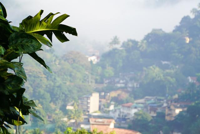 Sri Lanka-13